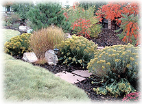 Xeriscaping allows for lush gardens in desert areas where water is short in supply.